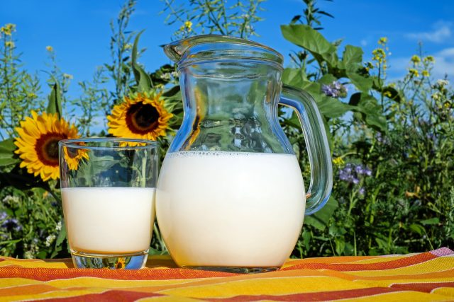 Cow's Milk Causes Growth?