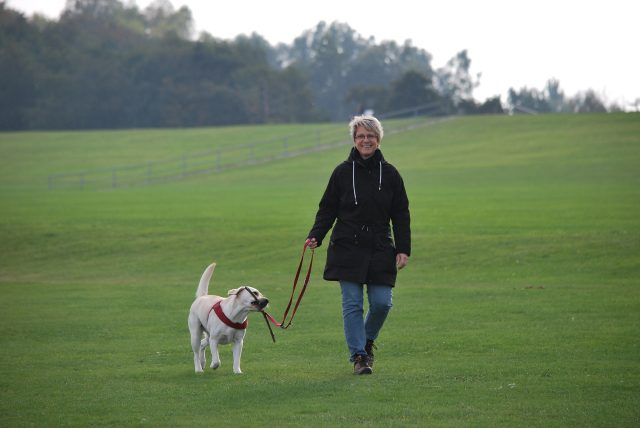 Exercising Dogs Is Mutual Benefit!