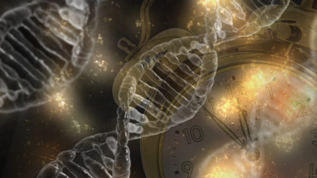 Stem Cells Fight Mitochondrial Aging!