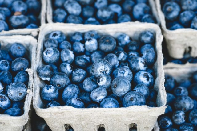 Powerful Blueberries Remarkable Health Results!