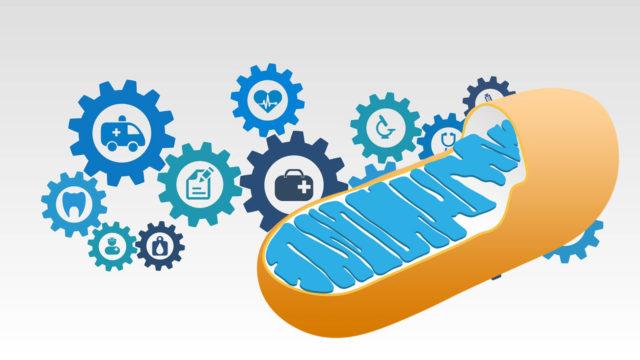 Unbelievable Cancer Ketosis Mitochondria Triumph