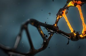 Age IS Health Marker. SOLUTION? Revitalize Stem Cells!