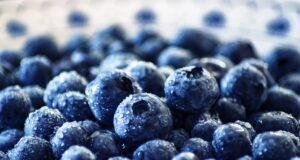 Fantastic Fruit Blunts Sugar Damage!
